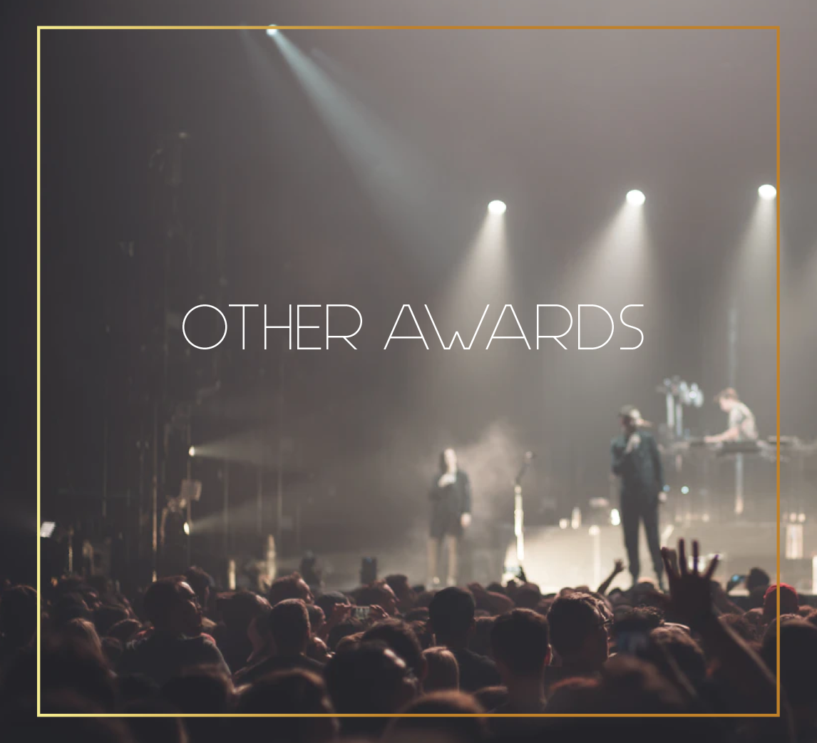 tickets to awards from mtv music awards to grammys and special vip award parties