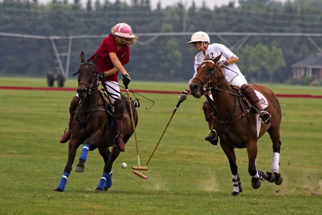 polo in the park vip tickets