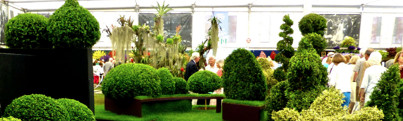VIP Packages to Chelsea Flower Show 2017