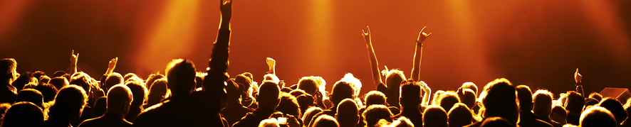 Be part of a crowd at a Music Concert with The Sincura Group