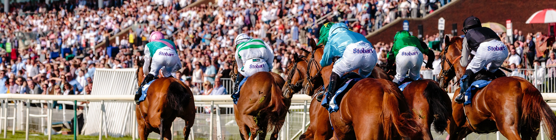 York Racecourse Tickets and Hospitality